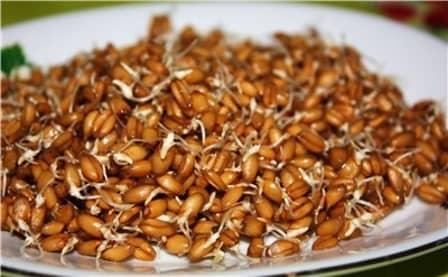 Бутерброд из проросшей пшеницы