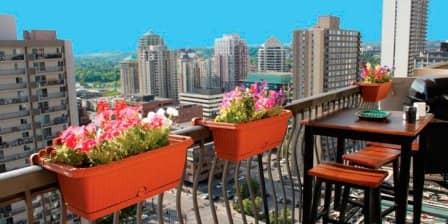 Основы и принципы озеленения балконов, лоджий, террас