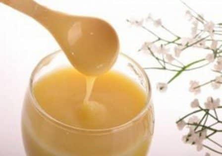 Свойства пчелиного маточного молочка