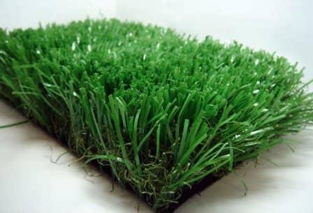 Какой газон лучше?