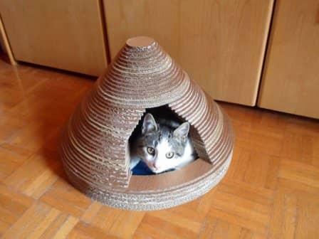 Домик для кошки своими руками из картона - мастер-класс
