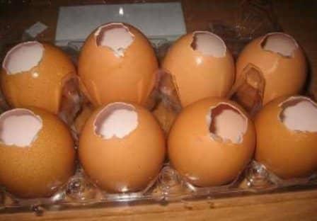 Заливные яйца (рецепт с фото)