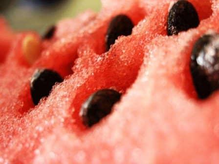 Как вырастить сладкие арбузы
