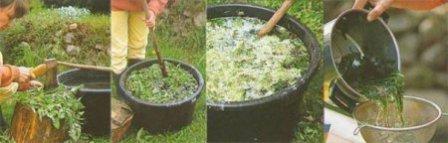 Подкормка клубники весной: проверенные способы