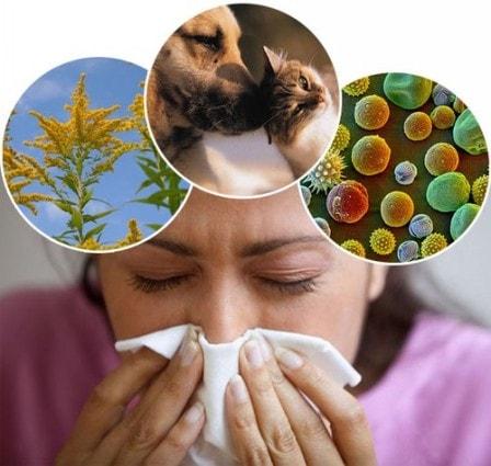 Надежные методики борьбы с аллергией