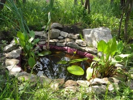 Мини-озеро на загородном участке