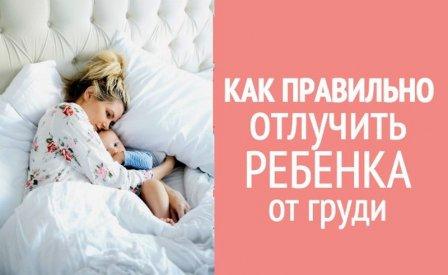 Отлучение ребенка от грудного вскармливания в 1 год
